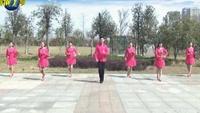 楠楠舞蹈—在希望的田野上(原创经典入门步子舞)正背面演示及口令分解动作教学