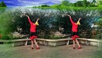 翼龙舞蹈《唱着情歌流着泪》编舞 制作 演示 木正背面演示及慢速口令教学