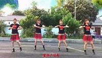 蘇嶺姐妹廣場舞《我愛廣場舞》完整版演示及口令分解動作教學