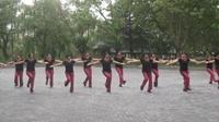美秀廣場舞《我愛廣場舞》完整版演示及口令分解動作教學