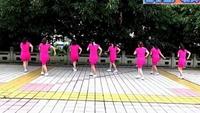 謝春燕廣場舞(我有錢我任性)正背面口令分解動作教學演示