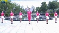 楠楠舞蹈《你是我红尘中最美的缘》动感健身舞正反面演示及分解动作教学