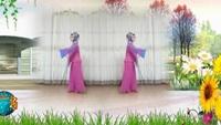 漯河海之夢廣場舞個人表演《國韻》經典正背面演示及口令分解動作教學