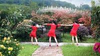 長興蘭蘭廣場舞《向上攀爬》三亞美舞團口令分解動作教學演示