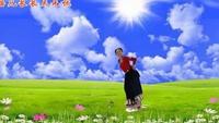 安徽臨泉楊橋応粉團廣場舞   個人版《穿行》正反面演示及分解動作教學