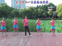 楠楠舞蹈《山花朵朵开》(欢快民族风附教学)口令分解动作教学演示