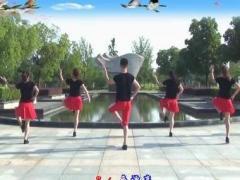 楠楠舞蹈《你潇洒我漂亮》(原创零基础第二课)原创附教学口令分解动作演示