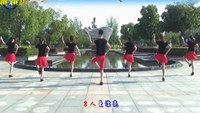 楠楠舞蹈《你潇洒我漂亮》原创零基础第二课原创附正背面教学口令分解动作演示