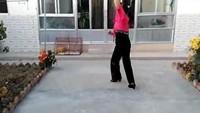 孔雀阿梅舞蹈《歌在飞》正背面演示及口令分解动作教学和背面演