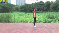 楠楠舞蹈《迷茫的爱》(零基础第三课入门鬼步舞)正背面演示及慢速口令教学