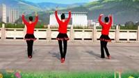 《動感桑巴》吉美廣場舞《背面)完整版演示及口令分解動作教學