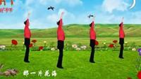 鳳鳳廣場舞《為你等待》口令分解動作教學