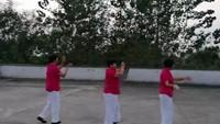 金楊老年廣場舞《北風吹》(晚練互動)經典正背面演示及口令分解動作教學