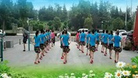 山东济宁风雅颂舞蹈队《闯码头》编舞:刘辛庄舞蹈完整版演示及口令分解动作教学