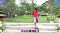 陸川紅梅廣場舞《你幸福我才快樂》編舞 雨夜完整版演示及口令分解動作教學