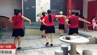 白家河開心健身隊廣場舞《哥哥妹妹》正背面演示及口令分解動作教學