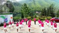 阿梅舞蹈《纳西情歌》编舞:吉美    团队演示附正背表演口令分解动作分解教学