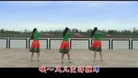 応子廣場舞《夢見你的那一夜》背面演示放大加字幕口令分解動作教學