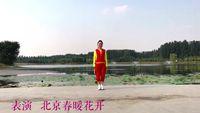 北京春暖花开舞蹈队 唱着情歌流着泪 表演 个人版 完整版演示及口令分解动作教学