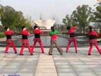 山谷里的思念 糖豆廣場舞課堂 20141217經典正背面演示及口令分解動作教學