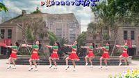 茉莉舞蹈《水月亮》原创傣族民族舞附教学32辑原创附教学口令分解动作演示