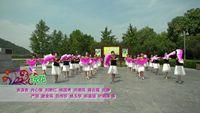 河南省信阳市浉河区秀秀广场舞队 绒花 表演 团队版