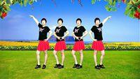 福建向日葵舞蹈《闯码头》原创附教学 口令分解动作教学