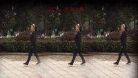 南燕北飄廣場舞《拜新年》曳步舞 完整版演示及分解教學演示