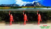 河南魯山軍王健身舞個人版《拜新年》編舞 慧慧 正反面演示及分解動作教學