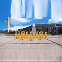 芜湖飞翔广场舞  最美是你 正背表演 团队版 原创附教学口令分解动作演示