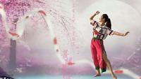 重慶紅蜻蜓廣場舞-古典舞《半壺紗》編舞:藝莞兒 原創附教學口令分解動作演示