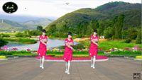 太陽花舞之悅廣場舞《中國歌最美》 正背面口令分解動作教學演示