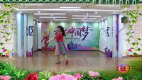 梅湖燕子舞蹈《葬花吟》 附正背表演口令分解动作分解教学