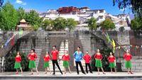重慶聯隊參加六哥舞友會《為你等待》制作:梅梅 經典正背面演示及口令分解動作教學