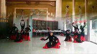 凤阳茉莉舞蹈《书简舞》 正反面演示及分解动作教学