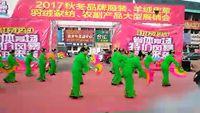 太鐵白龍廟社區開心快樂舞蹈隊《大辮子》 完整版演示及口令分解動作教學