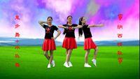 舞動巴陵廣場舞原創水兵舞+鬼步舞《納西情歌》基礎步 正背面演示及慢速口令教學