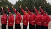 金色夕陽舞隊廣場舞《花樓戀歌》7人版 編舞:六哥 口令分解動作教學演示