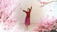 雁南飞舞蹈《落花》编舞教学:左拉 正背面演示及口令分解动作教学和背面演