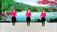 庆阳秀秀舞蹈《闯码头》 完整版演示及分解教学演示