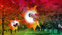 贛州少家碧玉廣場舞《印度經典》 編舞 吉美廣場舞 正背面演示及口令分解動作教學和背面演