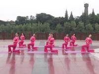 和县美姿瑜伽舞蹈 古典舞 落花 表演 完整版演示及分解教学演示