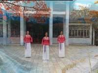 晨韻小舞廣場舞 國韻 表演 編舞 王梅 正背面演示及口令分解動作教學和背面演
