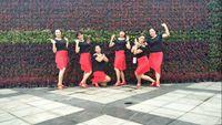 四川蓉蓉廣場舞團隊版《開開心心每一天》原創附分解 正反面演示及分解動作教學