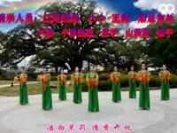 廣西小小廣場舞 國韻 表演 團隊版 編舞 王梅 原創附教學口令分解動作演示