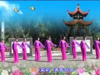秋日馨香廣場舞 國韻 表演 集體版 編舞 王梅 完整版演示及分解教學演示