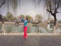 灵儿舞蹈 月落泉 表演 口令分解动作教学演示