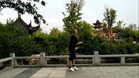 豫東飛鶴廣場舞《大風歌》曳步彈跳入門舞16步717 口令分解動作教學