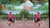 嘉祥动漫童话村舞蹈《唱着情歌流着泪》双人对跳 经典正背面演示及口令分解动作教学