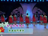 応子廣場舞  天邊的格桑花 背面展示 口令分解動作教學